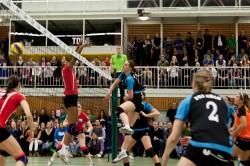 DSHS SnowTrex Köln gegen den amtierenden Pokalsieger und Vizemeister Vilsbiburg (Foto: Martin Miseré)