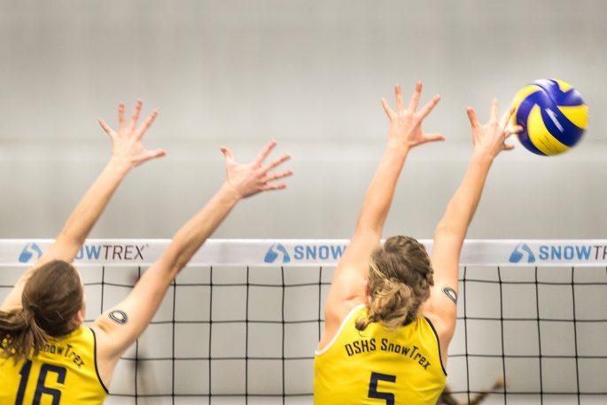 DSHS SnowTrex Köln gewinnt erstmals 3:0 gegen Stralsund